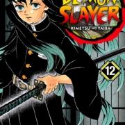 Demon Slayer Kimetsu No Yaiba 12