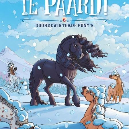 Te Paard 6: Doorgewinterde Pony's